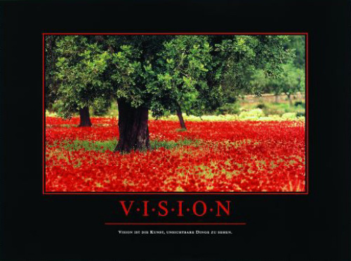 Vision by Anonymous