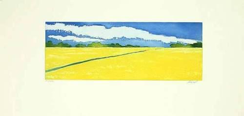 Rapsfeld (2001) by Henryk Fiset