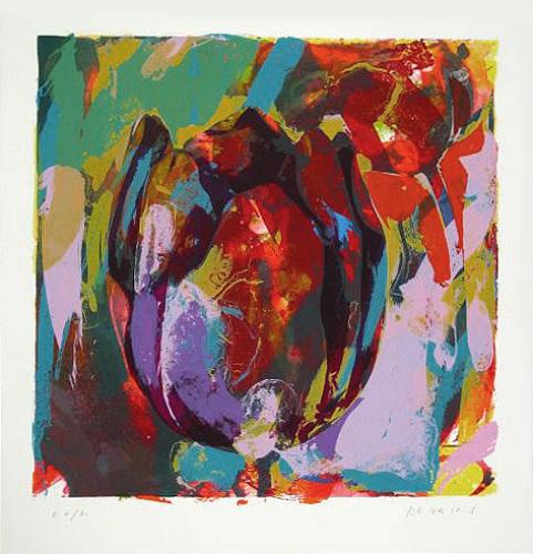 Tulip Friesland (2002) by Paul de Vries