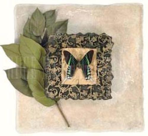 Bali Butterfly I by Leslie Mueller