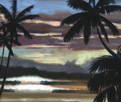 Niwiliwili Sunset by Wade Koniakowsky