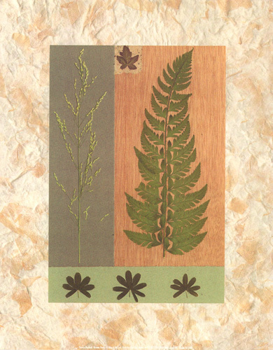 Green Fern by Denise Duplock