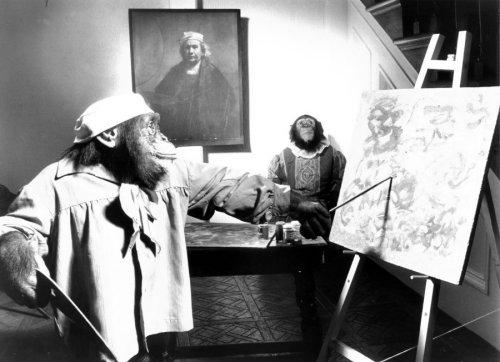 Chimpanzee painting a masterpiece by John Drysdale