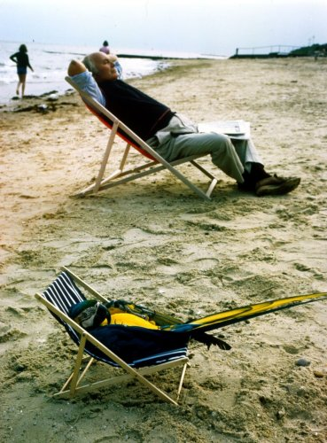 Parrot relaxing in a deck-chair by John Drysdale