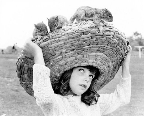 Squirrels on a girl's hat by John Drysdale