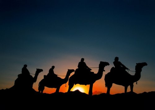 Silhouettes in the Arabian desert, Egypt by Roland Marske