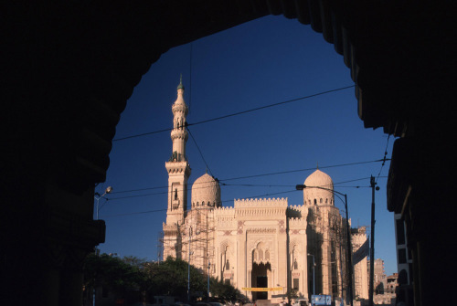 Mosque in Alexandria by Roland Marske