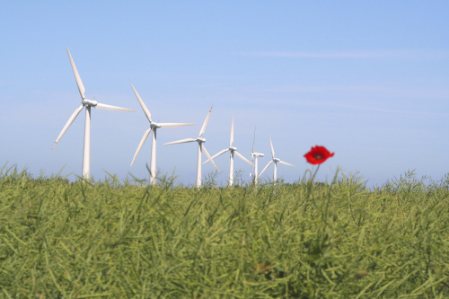 Wind turbines by Rosseforp