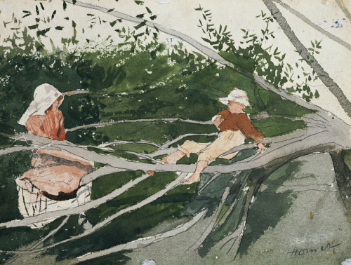 Out On A Limb by Winslow Homer