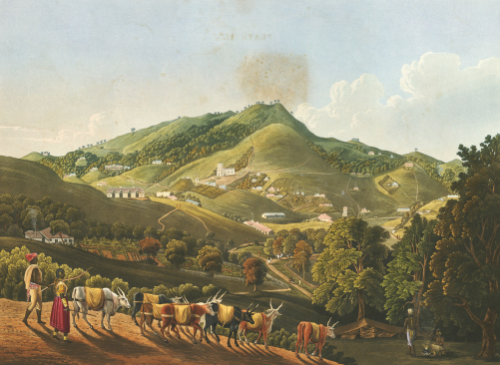 Views In India By Captain Richard Barron, 1837 by Richard Havell
