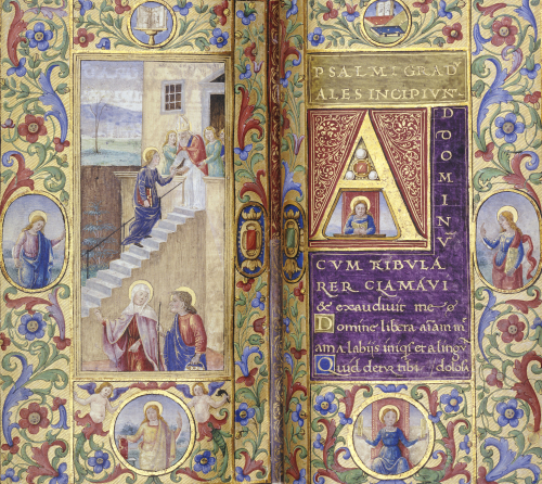The Virgin Ascending The Stairs To The Temple, C.1500 by Christie's Images