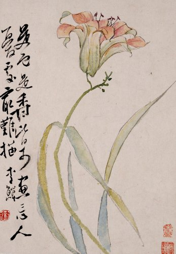 A Lily.  18th Century by Christie's Images