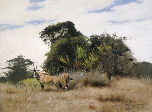 Gemsbok Oryx, 1891 by Wilhelm Kuhnert