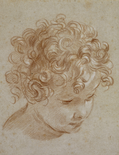 The Head Of A Child Looking Down To The Right by Niccolo Berrettoni