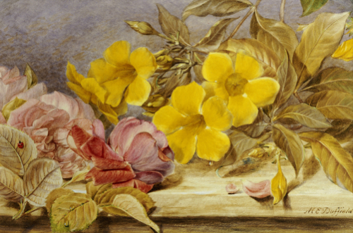 A Still Life Of Roses And Other Flowers On A Ledge by Mary Elizabeth Duffield