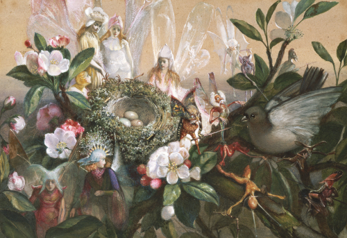Fairies Round A Bird's Nest - The Distressed Mother by John Auster Fitzgerald