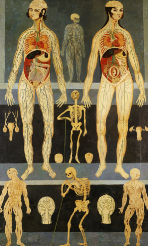 Anatomical Studies: Persia, Qajar by Christie's Images