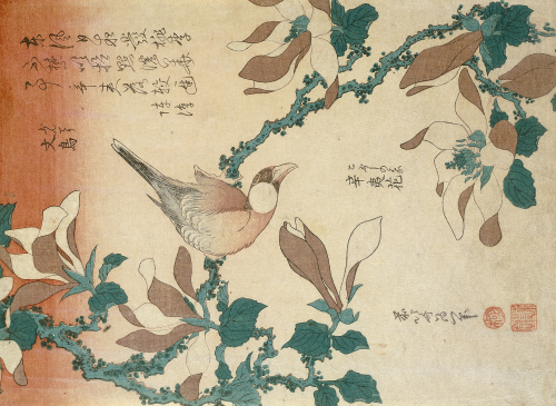 A Paddy Bird Perched On A Flowering Magnolia Branch From The Series 'Small Flowers' by Katsushika Hokusai
