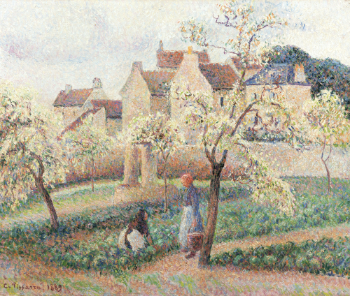 Plum Trees In Blossom, 1889 by Camille Pissarro