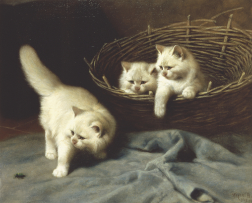 White Angora Kittens With A Beetle by Arthur Heyer