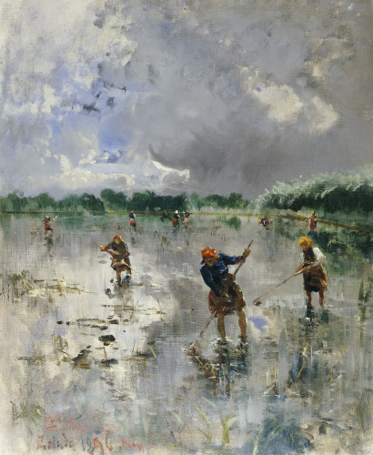 Women Working In Rice Fields, 1896 by Pompeo Mariani