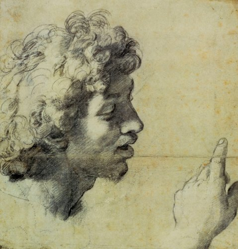 Studies of a Man's Head and Hand by Raphael