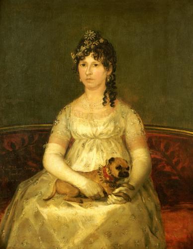 Portrait Of Dona Francisca Vicenta Chollet Y Caballero, 1806 by Francisco de Goya