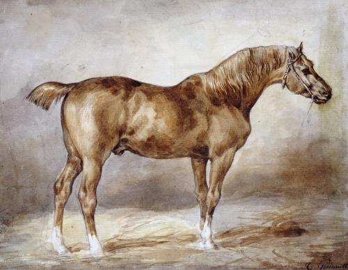 Cheval A L'Ecurie by Jean-Louis-André-Théodore Géricault