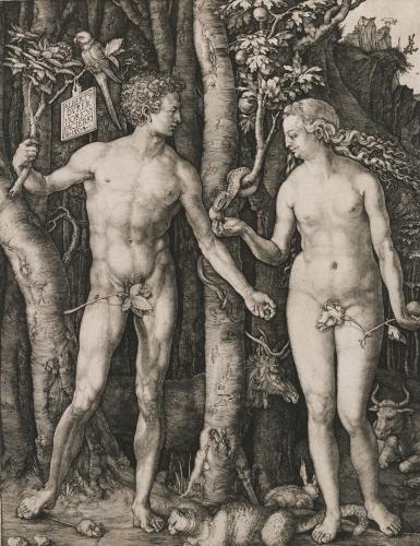 Adam And Eve, 1504 by Albrecht Dürer