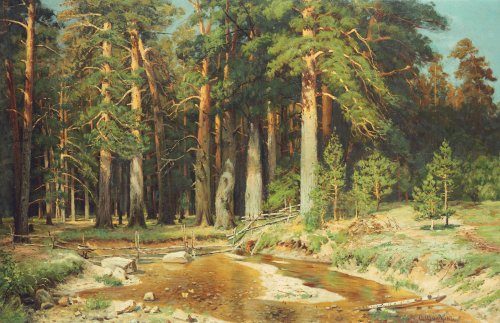 The Mast-Tree Grove, Study by Ivan Ivanovich Shishkin