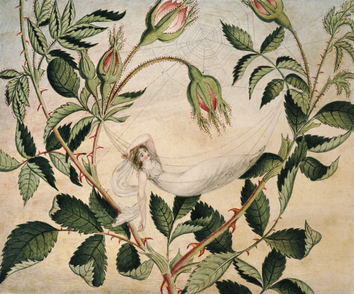A Fairy Resting In A Hammock Spun From A Cobweb by Amelia Jane Murray Lady Oswald