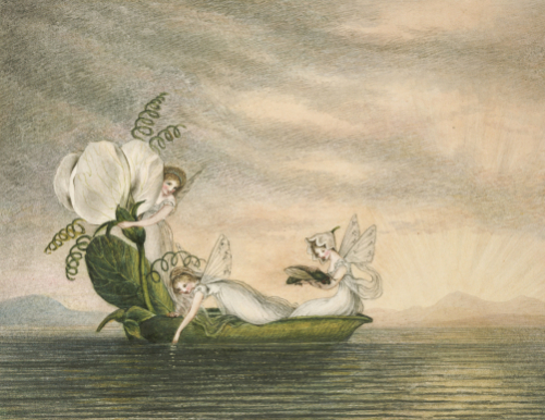Fairies Floating Downstream In A Peapod by Amelia Jane Murray Lady Oswald