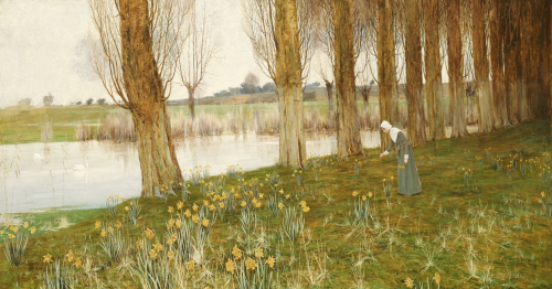 The Amber Vale, A Host Of Golden Daffodils by John George Sowerby