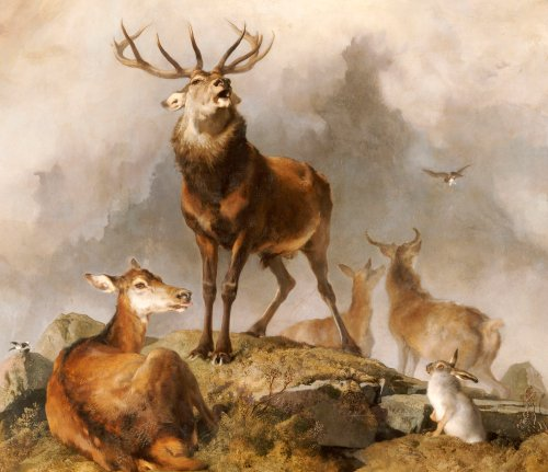Scene in Braemar - Highland Deer by Sir Edwin Henry Landseer