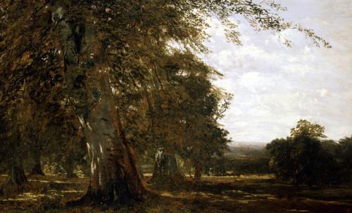 Windsor Woods by John Frederick Kensett