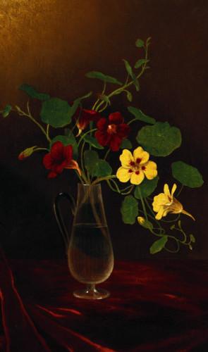 Nasturtiums In A Vase by Martin Johnson Heade