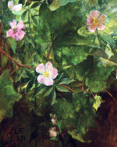 Wild Rose And Grape Vine, Study From Nature by John La Farge
