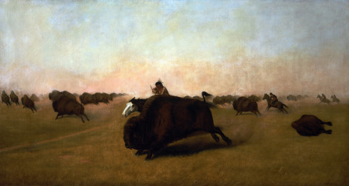 Buffalo Hunt On The Plains by William James