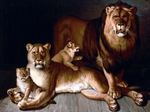 A Pride Of Lions by Jean-Baptiste Huet