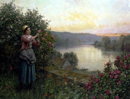 A Pet Rosebush by Daniel Ridgeway Knight