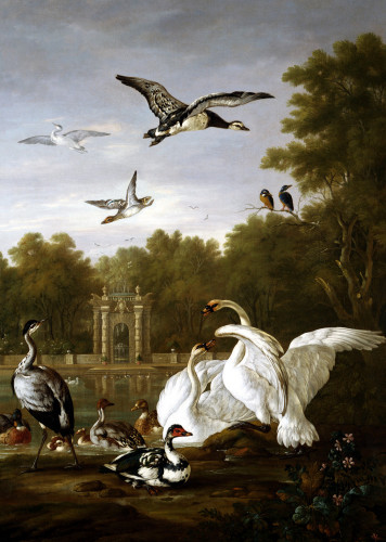 Swans, Ducks And Other Birds In A Park by Peter Casteels III