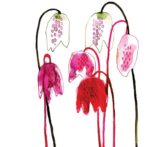 Fritillaria by Louise Cunningham