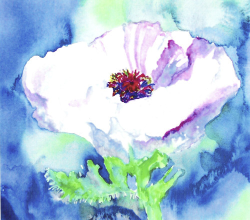 Kathy's poppy by Luisa Gaye Ayre