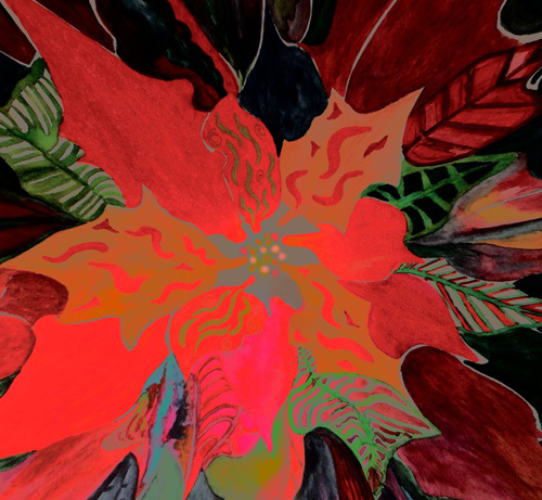 Poinsettia no 1 by Luisa Gaye Ayre