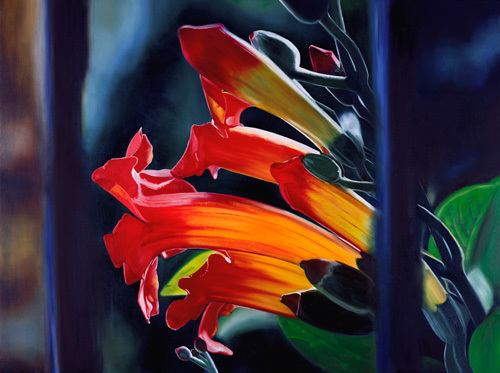 Trumpet Vine by James Knowles