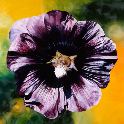 Purple Hollyhock by James Knowles