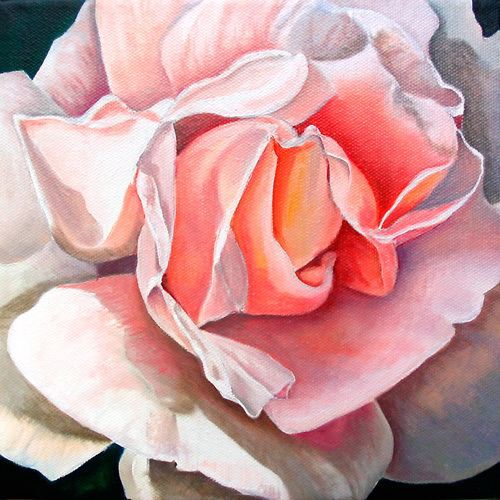 Single Rose by James Knowles
