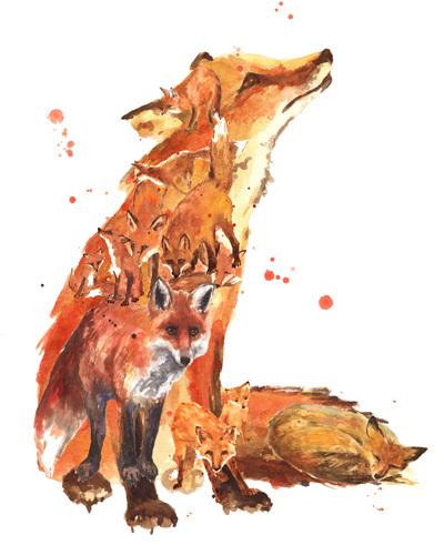 Fox Mania by Alison Fennell