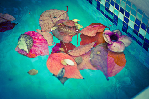 Pool by Marc Lickfett