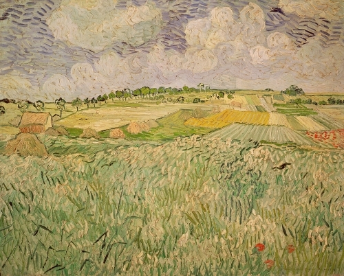 The Plain at Auvers, 1890 by Vincent Van Gogh